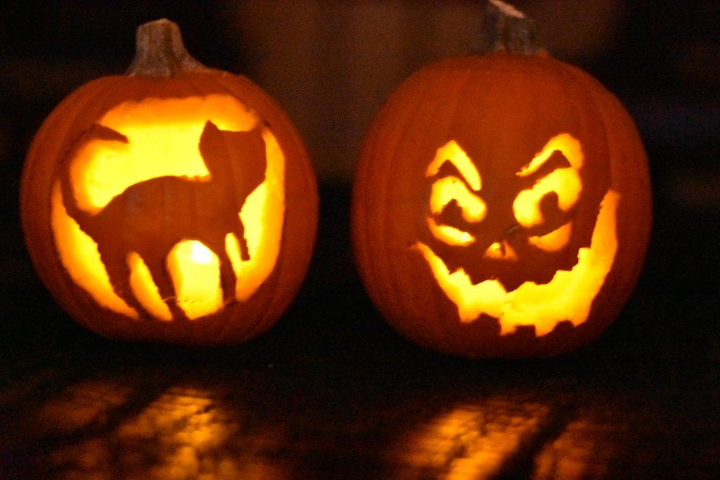 Pumpkin Puree instant Pot- Halloween Fun