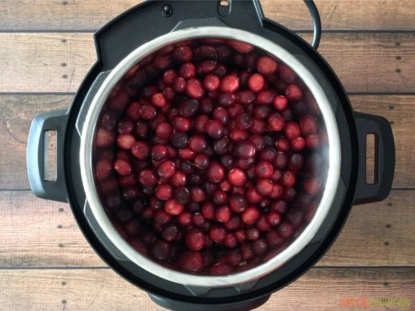 Cranberries, water, seasoning in the Instant Pot ready to be pressure cooked