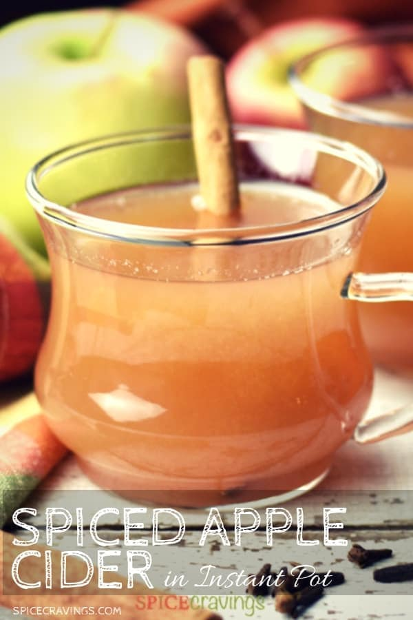 A warm cup of apple cider with a cinnamon stick