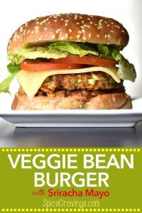 Veggie Bean Burger Recipe