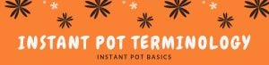 Commonly used Instant Pot terminology