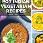 A collection of my Top 10 BEST Instant Pot Indian Vegetarian Recipes