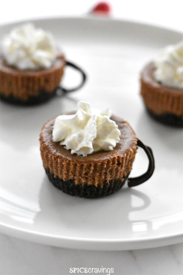 A petite chocolate cheesecake with whipped cream