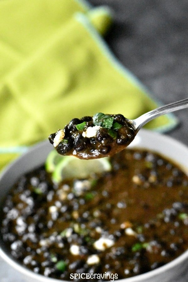 A spoonful of creamy Black beans garnished with cilantro and cotijja cheese
