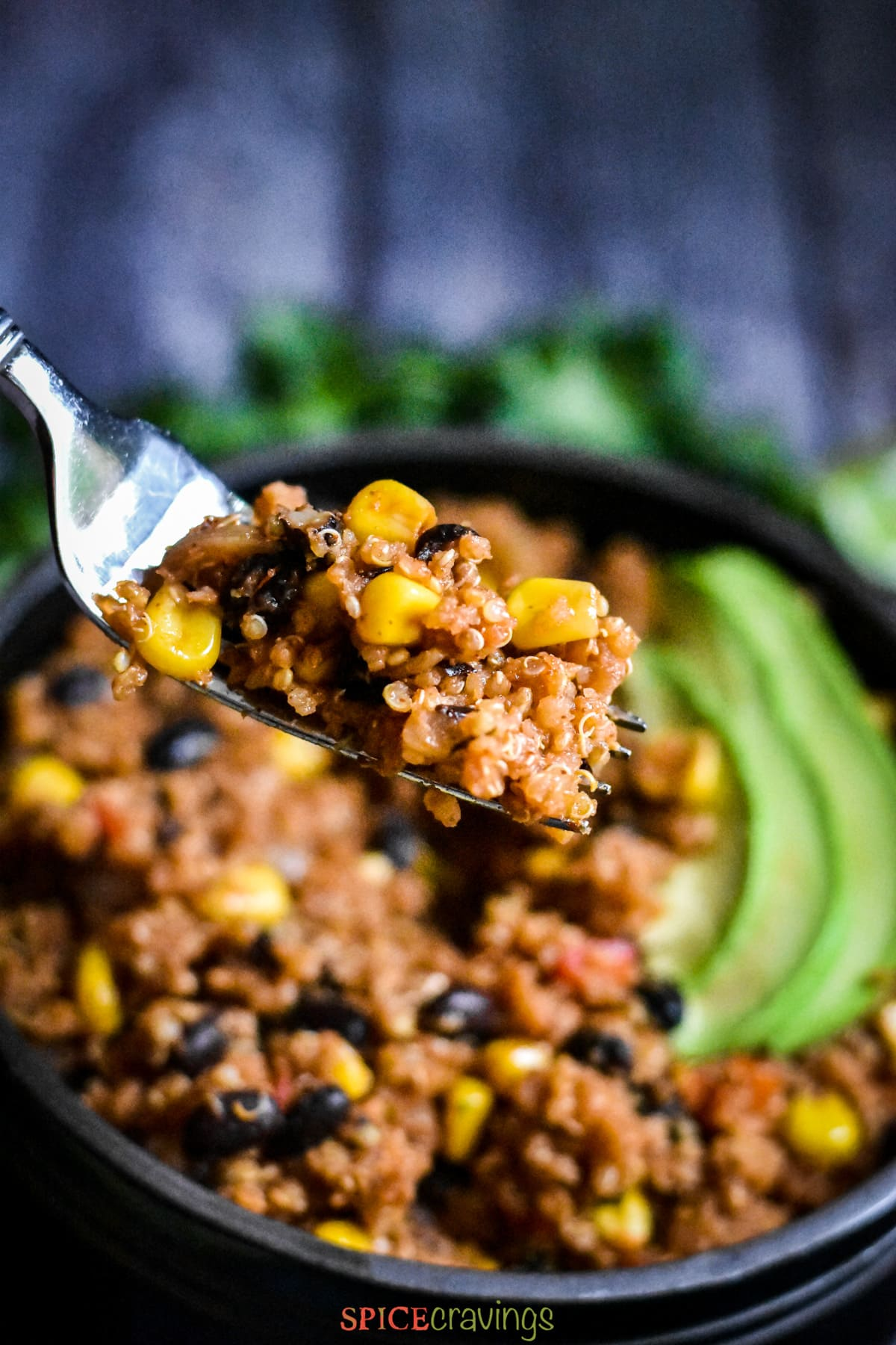 A fork full of Mexican style quinoa with beans and corn