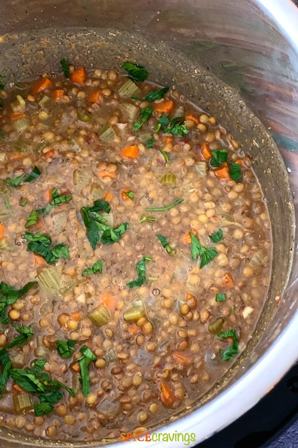 lentil soup in bowl of instant pot