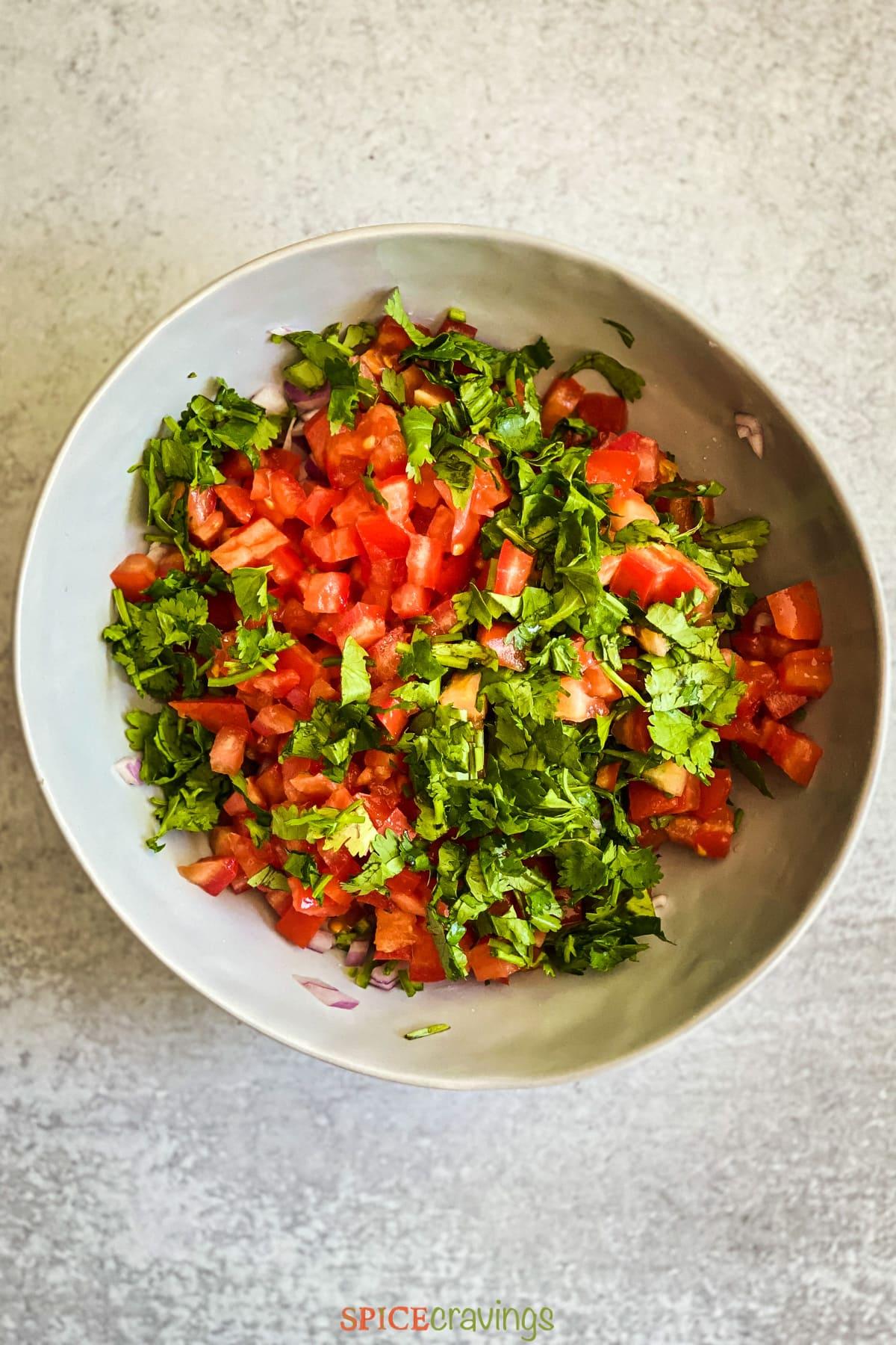 Bowl with chopped tomato, onion and cilantro