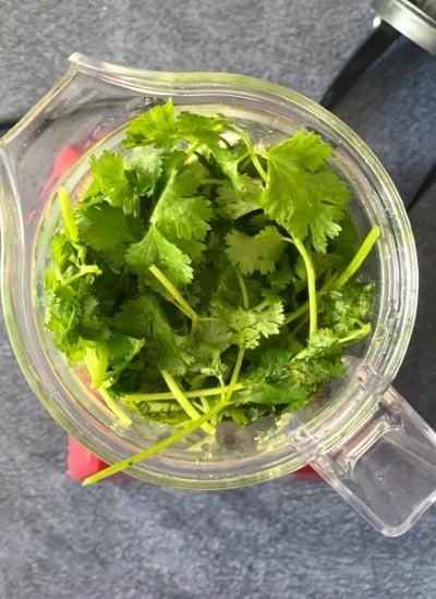 bunch of cilantro in blender