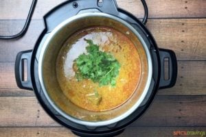 Garnishing the lamb curry with cilantro