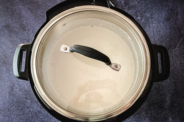 idli dosa batter fermenting in instant pot with glass lid