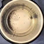 Heating mustards seeds in oil in the instant pot