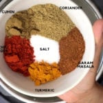 Indian Spice mix including salt, garam masala, coriander, cumin and turmeric