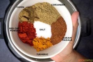 Indian Spice mix including salt, garam masala, coriander, cumin and turmeric