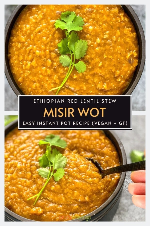 ethiopian red lentil stew in black bowl with cilantro garnish and with spoon