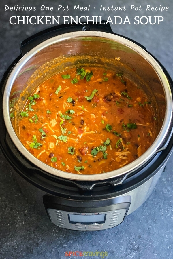 mexican soup recipe with enchilada sauce and chicken in instant pot