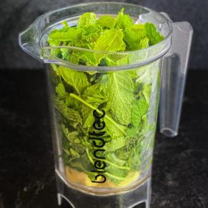 ginger, garlic, cilantro, mint, water in base of blender