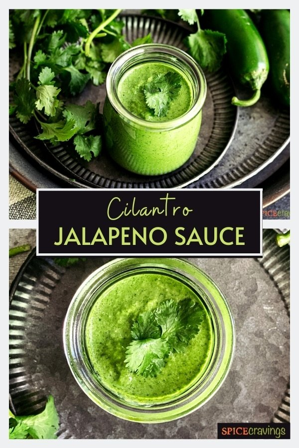 cilantro sauce in glass jar with cilantro sprigs in backgroud