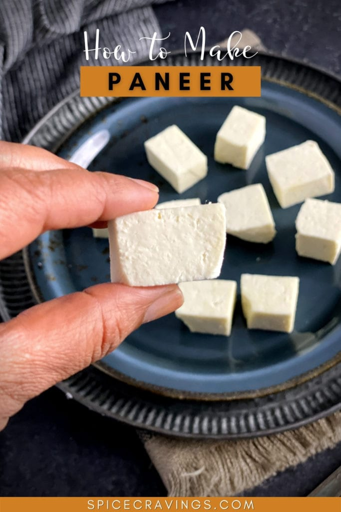 A hand holding a cube of paneer