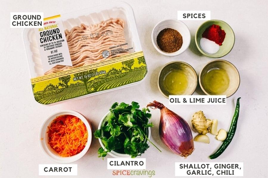 Ingredients for making Chicken Seekh Kebab