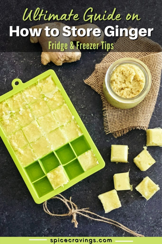 Ginger root, ginger paste in jar and ice cube trays