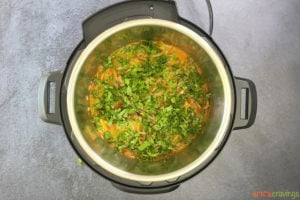 Rice and chicken in instant pot with water and cilantro