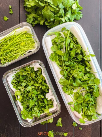 whole, chopped and stems of cilantro in containers