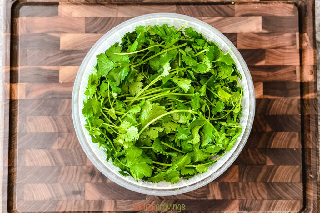 whole cilantro in salad spinner