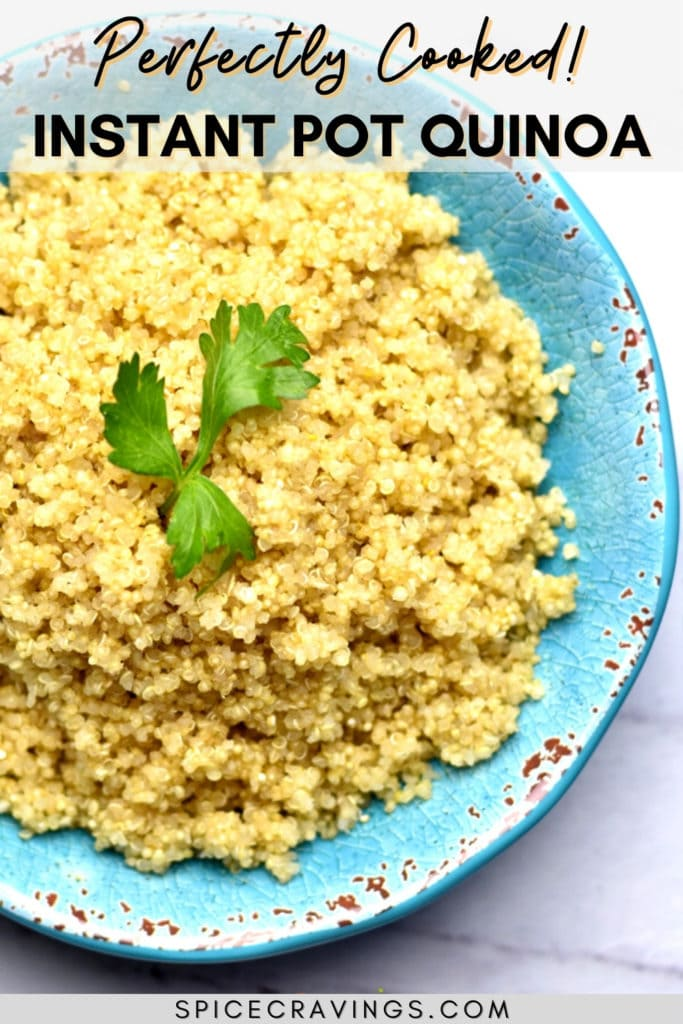 Cooked quinoa in a blue bowl garnished with cilantro sprig