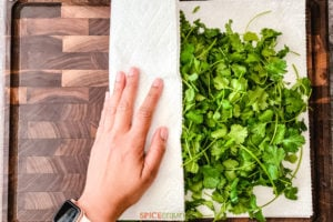 hand wrapping washed cilantro in paper towel