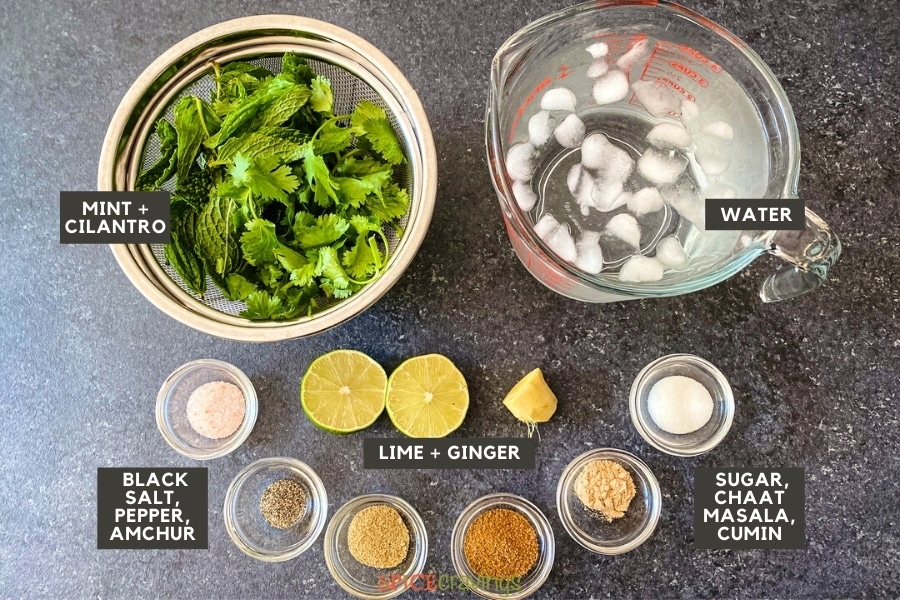 Cilantro, mint, water and spices needed to make cumin spiced lemonade called jaljeera