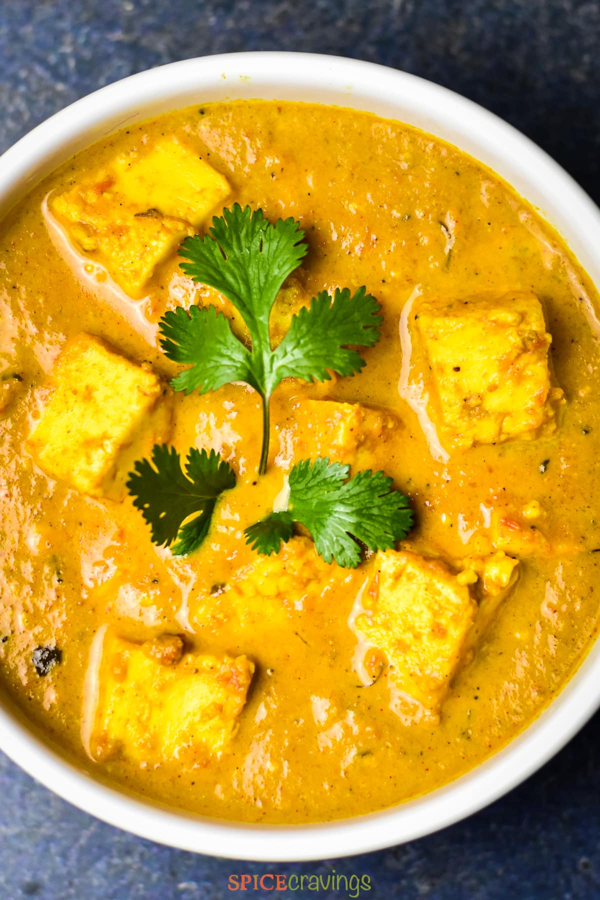 bowl of butter paneer masala topped with a sprig of cilantro