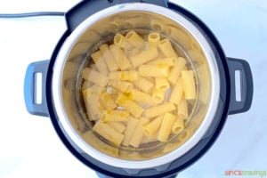 rigatoni noodles with water in instant pot