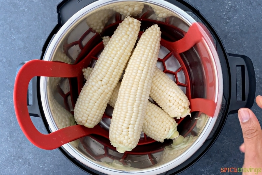 four corn cobs stacked in the instant pot
