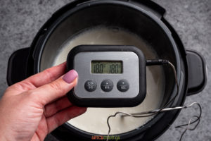 Thermometer reading 180F from the milk in the Instant Pot