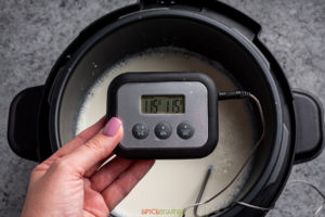 Thermometer reading 115F from the milk in the Instant Pot